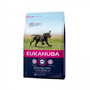 Eukanuba Growing Puppy Large Breed Kurczak 15kg