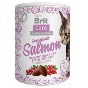 Bezzbożowy przysmak dla kotów z dodatkiem owoców