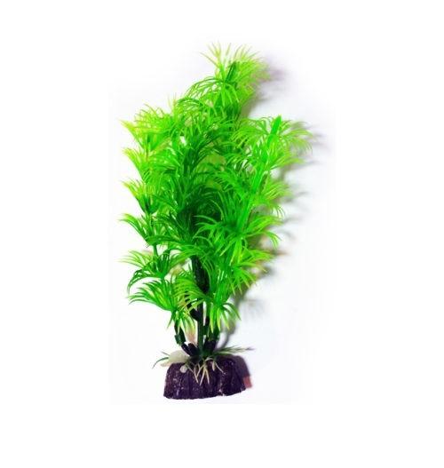 Aquael Roślina do Akwarium