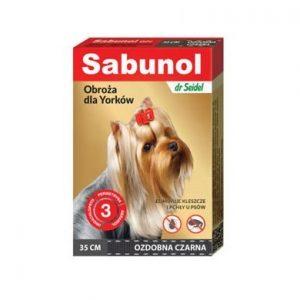 Sabunol obroża ozdobna czarna dla Yorków 35 cm
