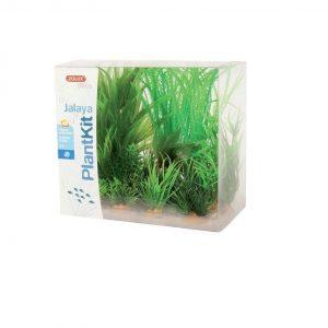 Zolux Dekoracja roślinna PLANTKIT JALAYA model 1